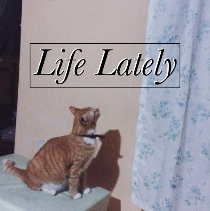 Life Lately v.3