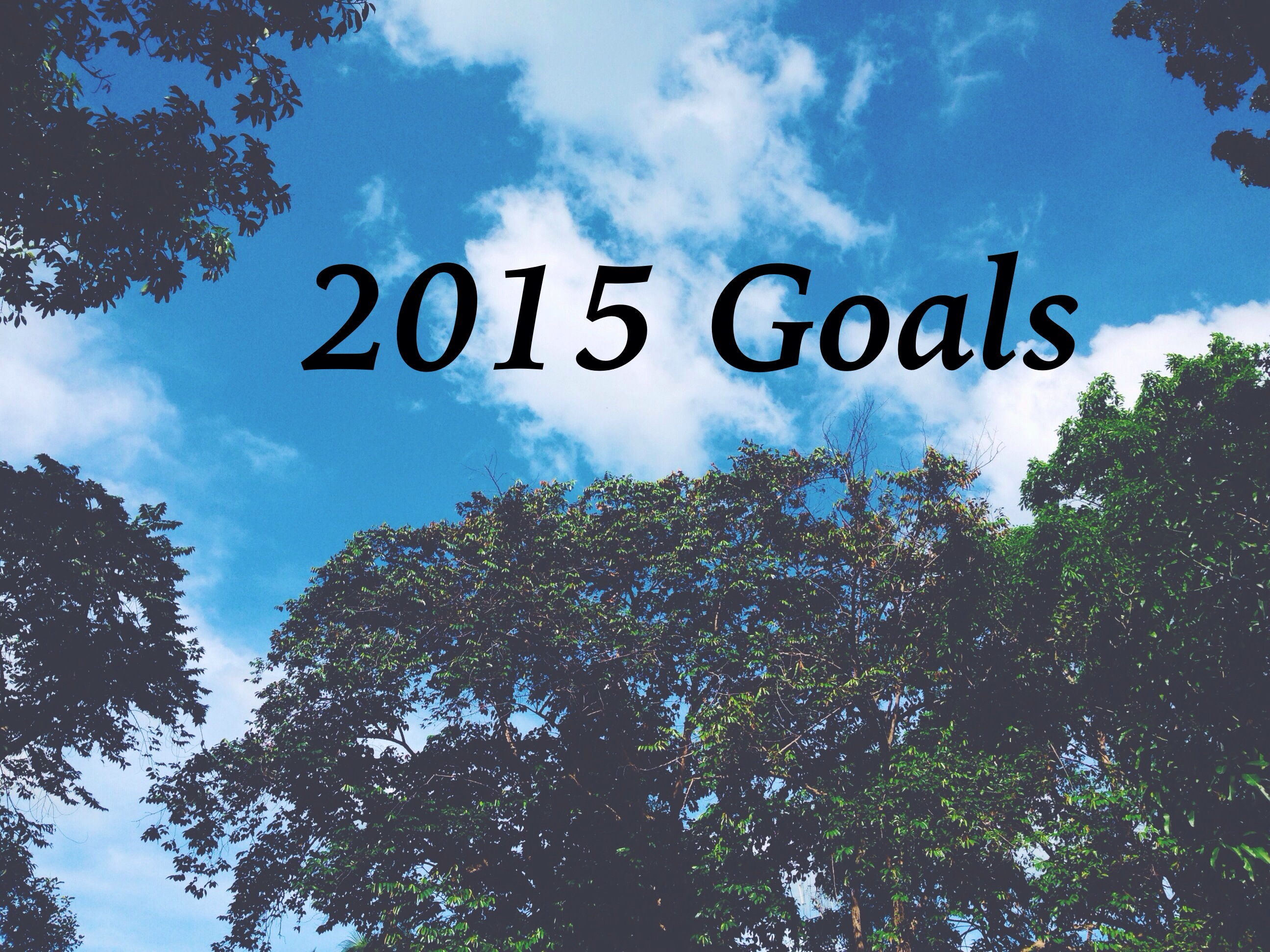 This Year's Goals