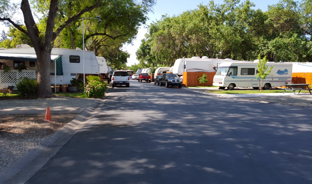 What To Know About Lake Havasu RV Parks Traveling with an RV across countries can be a wonderful experience. First of all, you will definitely feel like a wanderer or a traveler eager to arrive at different destinations and explore their natural beauties. Using an RV is also a cheaper option because of several reasons. You can sleep in it, instead of checking in a hotel. You can cook food inside instead of frequently eating at restaurants. You can use the bathroom within the vehicle as well. There's a reason they call this vehicle a recreational one. It is the perfect vehicle for people looking to explore the world while at the same time save on money. Not only that, but you also have the chance to discover a lot of hidden gems in the world that otherwise you won't be able to with a regular car or riding a plane. Nowadays, you can find a lot of RV parks and campgrounds that can bring people together. There are a lot of enthusiasts out there looking to bond with people with a similar interest. For a variety of reasons, RV camping is becoming increasingly popular. The development and attraction of RV parks are some of the most essential factors driving this growth. Click on the link for more https://medium.com/@campanionteam/five-advantages-of-traveling-with-a-motorhome-dd2ed1a6b54d. Cities with unique personalities are much less common in today's world than they were a few years earlier. After all, the majority of people use Instagram to track the same celebrities, watch the same culinary clips on Youtube, and shop on the very same platforms. Every day, our culture becomes more digitalized and mainstream. An RV park is a fun alternative to staying in a hotel. Many people who live in a recreational vehicle or take extended vacations are less concerned with their social media activity and more concerned with the world surrounding them. You'll soon note that the RV culture fosters a sense of kinship that is uncommon in today's society. If you want to find out more about